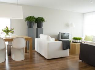 ,客厅,现代,黑白,