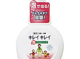 日本原装进口狮王LION植物泡沫洗手液250毫升,