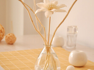 高档欧式天然植物无火香薰精油套装柳枝挥发香熏香氛100ml,