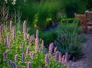 ,当代风格,园艺,