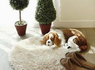 韩国进口代购 柔软长毛电脑椅地毯 客厅床前地毯 地垫 50cm,地毯,