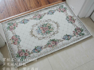 004环英伦棉加丝 可水洗门厅防滑垫/地垫/门垫/地毯/坐垫 50*80cm,地毯,