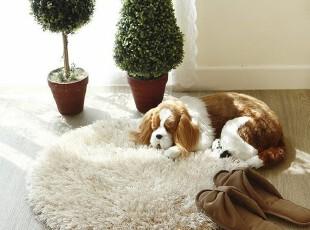 韩国进口代购防滑卧室卫生间脚垫爬行地毯茶几地垫门垫,地毯,