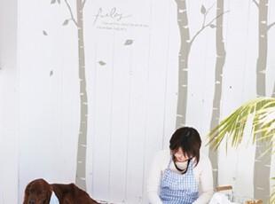 【Asa room】韩国进口代购壁贴 田园白桦树创意客厅墙纸墙贴 a351,墙贴/开关贴,