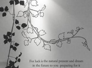 【Asa room】韩国进口代购壁贴 田园创意树藤客厅墙纸墙贴 a415,墙贴/开关贴,