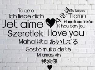 婚庆 婚房 装饰 精品磨砂墙贴 贴纸 《爱的世界语》多国语言,墙贴/开关贴,