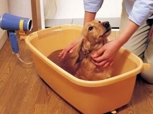 正品日本爱丽思/丝IRIS 树脂宠物狗狗沐浴盆 洗澡盆 BO-600E,宠物用品,