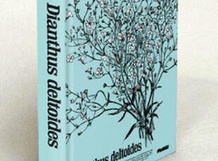 【九口山】牛皮纸精装硬皮字典本 涂鸦|日记|素描 ●石竹,文具,