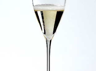 奧地利 Riedel 力多 Vinum XL水晶大號香檳型酒杯 香檳杯 6416/28,杯子,
