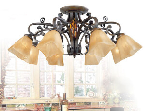 迪莱克斯灯饰灯具 客厅卧室 过道 楼道吸顶灯 欧式 铁艺18029-8C,灯具,