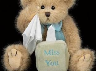奇迹美国代购包邮Bearington Bear 25.5厘米 MISS YOU 泰迪熊,玩偶,
