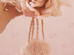 『達怡瑪』浪漫玫瑰系列窗帘夹对装,窗帘,