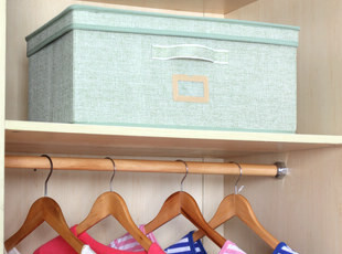 X 自然旋律 绿色有盖大号衣服收纳盒衣柜收纳箱整理箱 衣橱储物箱,衣柜,