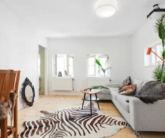 清新的瑞典小宅院