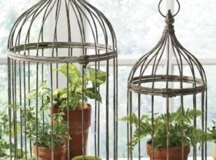 家庭收纳小盆栽 透出绿意生机