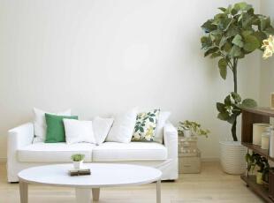 纯色空间里的绿色插曲