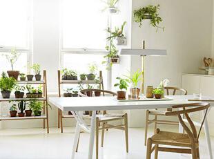 氧气阳光小餐厅