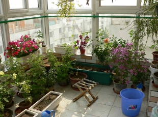 DIY阳台花园 随心铺设空间