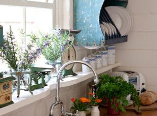厨房绿植 知选择