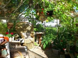 阳台中种上花花草草,坐在这里就像走在乡间的小路上,清香的花草是你的同伴,蓝天配朵朝阳在胸膛,阳光是如此温柔。