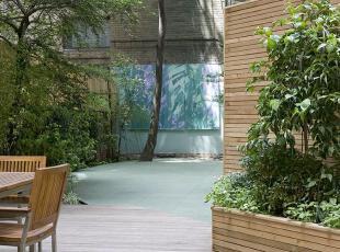,当代风格,庭院,