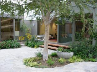 ,现代主义,庭院,