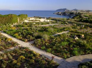 ,地中海风情,园艺,