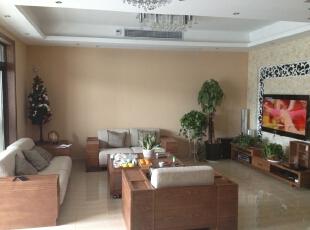 客厅有着很休闲的感觉,加入绿植的衬托更舒适。,169平,19万,现代,公寓,客厅,
