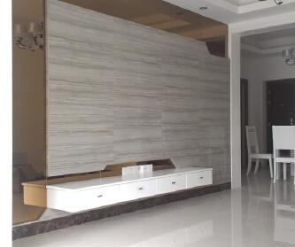 现代两居室实景