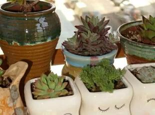可爱的小花瓶给生活增添了无限的美好。,90平,20万,混搭,三居,