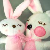 小兔子的幸福