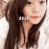 小rose的情书