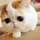 吴云的个人主页
