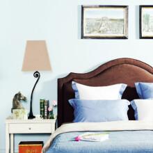 蓝色和棕色的卧室搭配