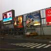 2013欧洲行之一  情迷阿姆斯特丹(上)